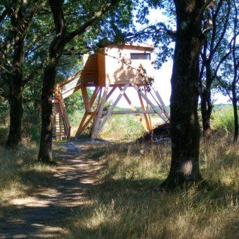 Séné - observatoires réserve naturelle